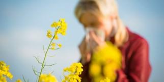 Allergien - Kreuzreaktionen